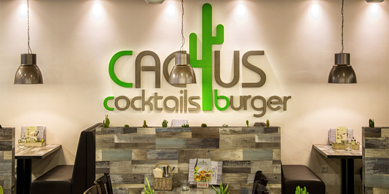 cactus3-1020×680